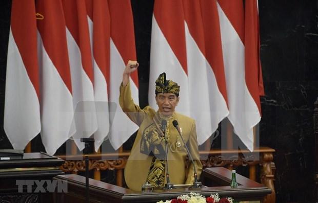 Indonesia anuncia ubicacion de nueva capital hinh anh 1
