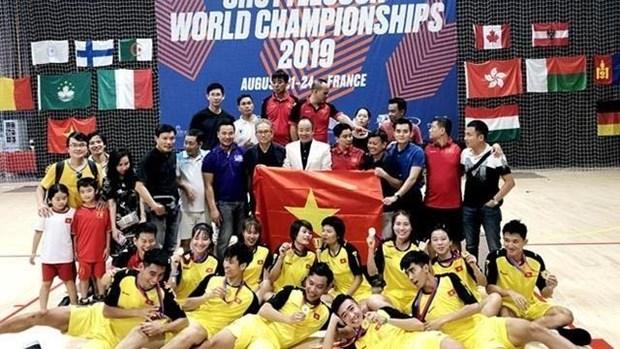 Triunfa equipo vietnamita en el Campeonato Mundial de Jianzi 2019 hinh anh 1