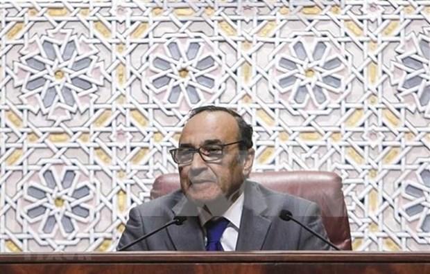 Solicita Marruecos su reconocimiento como observador de la AIPA hinh anh 1