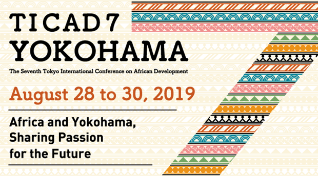 Participa delegacion vietnamita en Conferencia Internacional de Tokio sobre Desarrollo Africano hinh anh 1