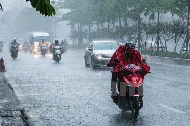 Enfrentara Vietnam cuatro ciclones en meses restantes de 2019 hinh anh 1