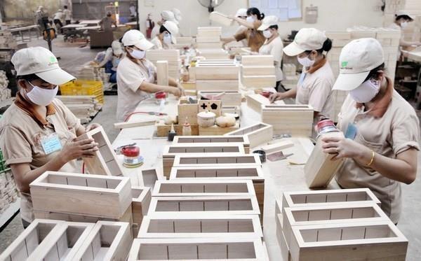Discuten en Vietnam sobre construccion del sistema de garantia legal del comercio maderero hinh anh 1