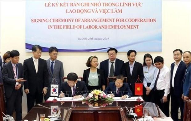 Fomentan Vietnam y Corea del Sur cooperacion laboral integral hinh anh 1