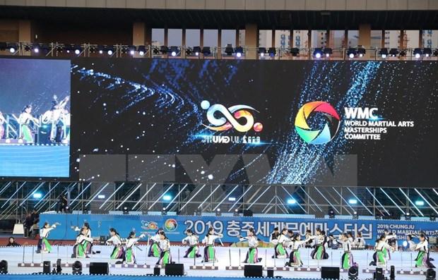 Vietnam compite en Maestria Mundial en Artes Marciales de Chungju 2019 hinh anh 1