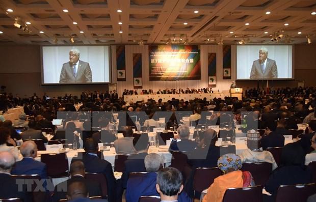 Participa Vietnam en Conferencia Internacional de Tokio sobre el desarrollo de Africa hinh anh 1