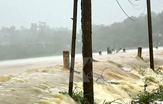Al menos tres muertos por el tifon Podul en Vietnam hinh anh 1