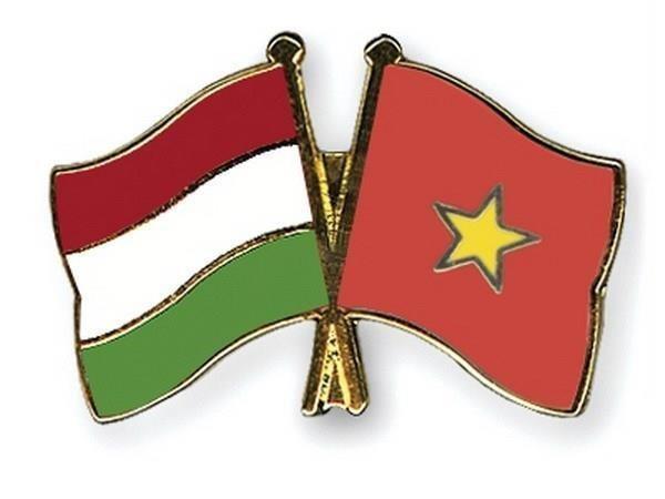 Conmemoran en Hungria Dia Nacional de Vietnam hinh anh 1