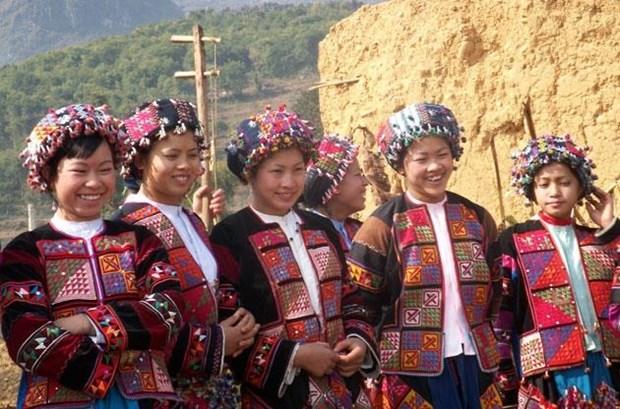 Resaltan identidad cultural de comunidades etnicas vietnamitas en ocasion del Dia Nacional hinh anh 1