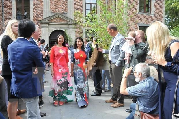 Presentan la cultura vietnamita en Belgica hinh anh 1