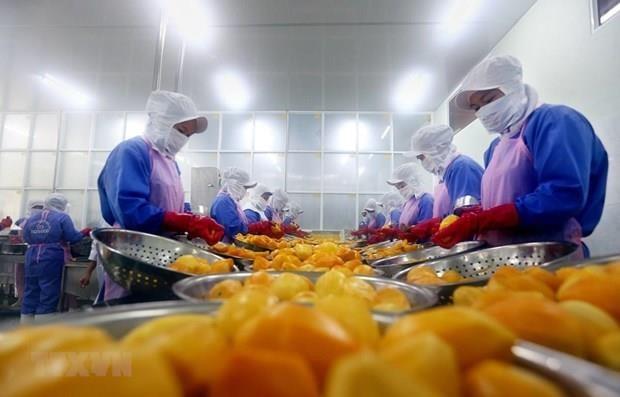 Alcanza Vietnam alto superavit comercial en primeros ocho meses del ano hinh anh 1