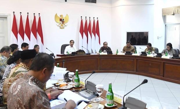 Indonesia acelera itinerario hacia desarrollo de la industria 4.0 hinh anh 1