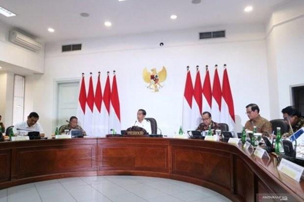 Ordena presidente indonesio acelerar hoja de ruta de la Industria 4.0 hinh anh 1
