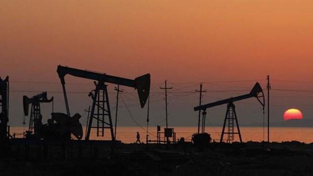 Ofrece Indonesia incentivos fiscales para el sector petrolero hinh anh 1