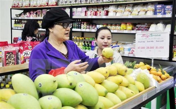 Intercambian Vietnam y Corea del Sur experiencias en impulso a la industria distribuidora hinh anh 1
