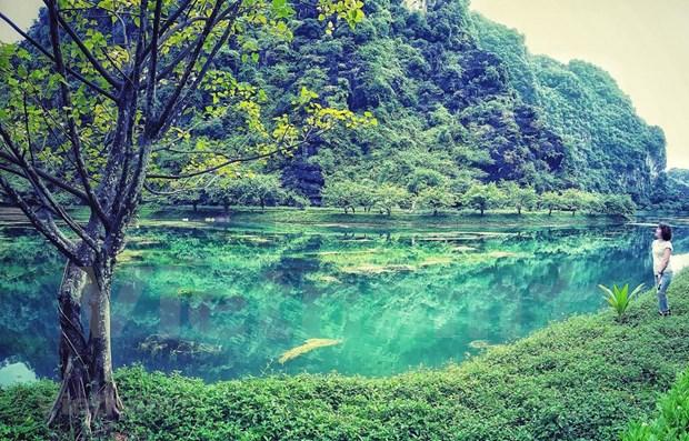 Provincia vietnamita de Ninh Binh por celebrar con exito el Ano de Turismo hinh anh 1