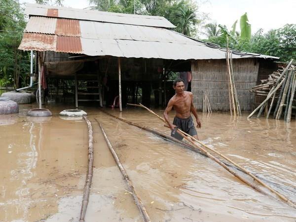 Orienta primer ministro camboyano fortalecer medidas preventivas contra inundaciones hinh anh 1