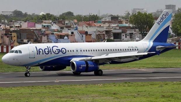 Abrira aerolinea IndiGo segunda ruta directa a Vietnam hinh anh 1