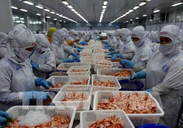 Registra Vietnam altos ingresos por exportaciones acuaticas en ocho meses de 2019 hinh anh 1