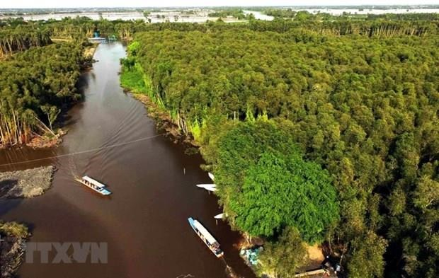 Revelan que el Delta del rio Mekong se hunde hasta cinco centimetros cada ano hinh anh 1