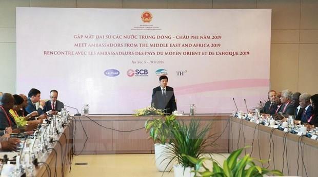 Aspira Vietnam a ampliar cooperacion con paises de Medio Oriente y Africa hinh anh 1