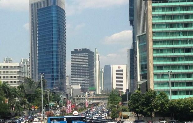Acapara atencion publica plan de traslado de capital de Indonesia hinh anh 1