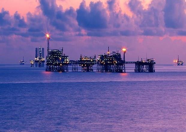 Sobrepasa empresa petroletra mixta Vietnam-Rusia numerosos objetivos hinh anh 1