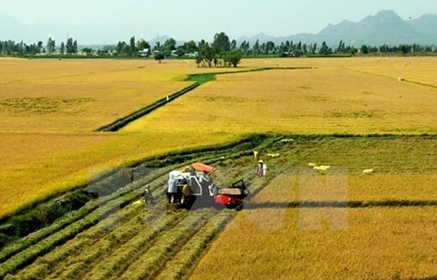 Localidades de Vietnam y Japon aspiran a incrementar lazos multisectoriales hinh anh 1