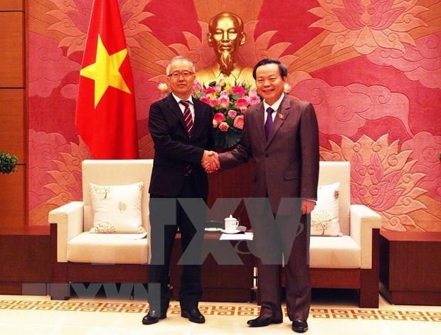 Aprecia vicepresidente del Parlamento de Vietnam fondos de asistencia al desarrollo de Japon hinh anh 1