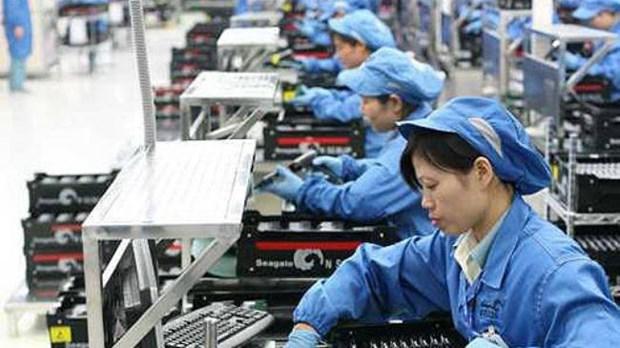 Perfecciona Vietnam Codigo del Trabajo a favor de igualdad de genero hinh anh 1