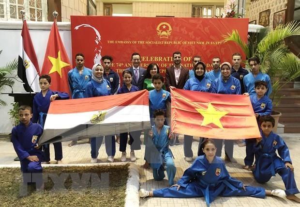 Destacan potencialidades de cooperacion entre Vietnam y Egipto hinh anh 1