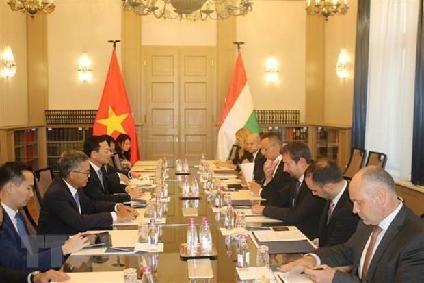 Apoya Vietnam aportes al desarrollo nacional de compatriotas radicados en Hungria hinh anh 1