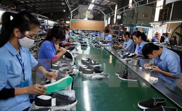 Vaticinan alto aumento en exportaciones de calzado de Vietnam en 2019 hinh anh 1