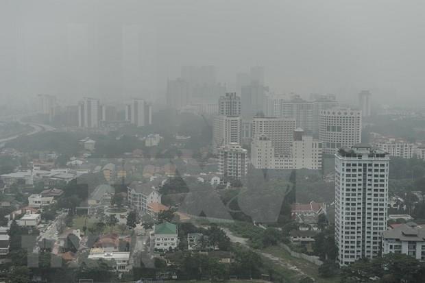 Cierra Indonesia mas de 30 campos de explotacion forestal para reducir incendios hinh anh 1