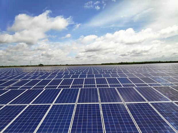 Proyectan construccion de instalaciones de energia solar en provincia vietnamita hinh anh 1