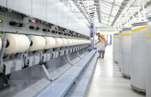 Envia empresa vietnamita primer lote de lana de oveja a Japon hinh anh 1