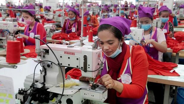 Salario base de trabajadores de industria textil de Camboya aumentara a partir de enero de 2020 hinh anh 1