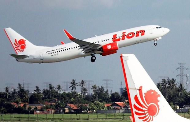 Indonesia y Malasia investigan filtracion de datos de clientes de Lion Air hinh anh 1