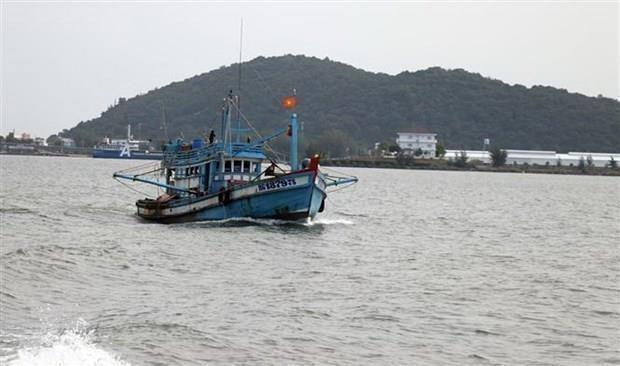 Vietnam en buen camino para eliminar tarjeta amarilla de la UE hinh anh 1