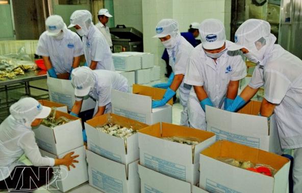 Industria de procesamiento y envasado de Vietnam registra crecimiento estable hinh anh 1