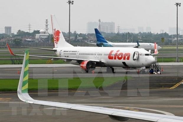 Identifican a responsables de filtracion de datos de pasajeros de Lion Air hinh anh 1