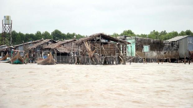 Instan en Vietnam a inspeccionar situacion de erosion en Delta de Mekong hinh anh 1