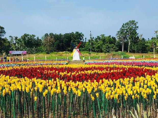 Convierte ciudad filipina basura plastica en tulipanes para combatir la contaminacion hinh anh 1