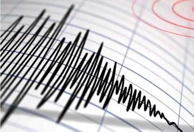 Sacude terremoto region oriental de Indonesia hinh anh 1