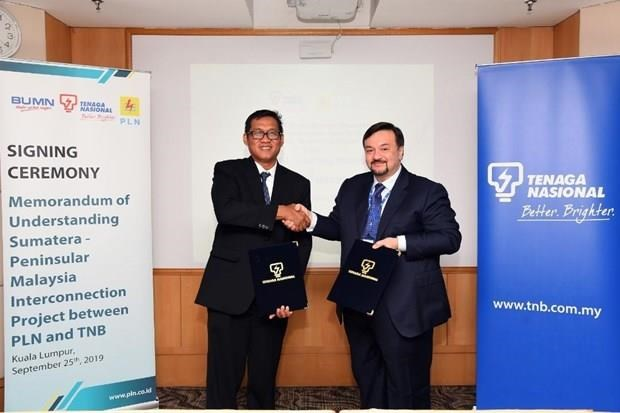Acelera Indonesia plan para exportar electricidad a Malasia hinh anh 1