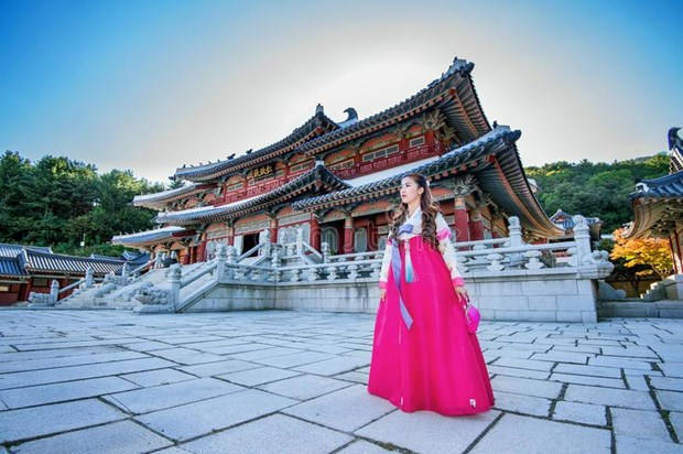 Promueven en Vietnam la cultura y el turismo de Corea del Sur hinh anh 1