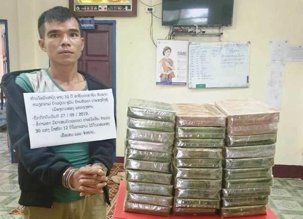 Cooperan Vietnam y Laos en la captura de narcotraficantes hinh anh 1