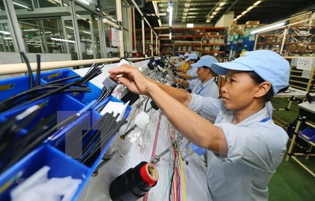 Pronostican expertos internacionales alto crecimiento economico de Vietnam en 2019 hinh anh 1