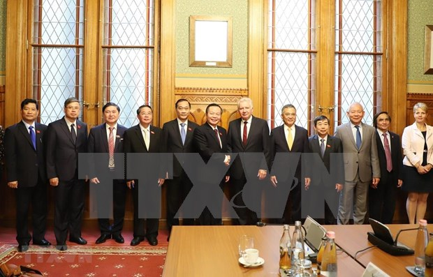 Formula Vietnam votos por fomentar lazos multifaceticos con Hungria hinh anh 1