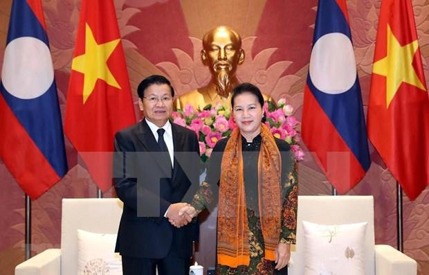 Ratifica Parlamento de Vietnam apoyo a la cooperacion con Laos hinh anh 1