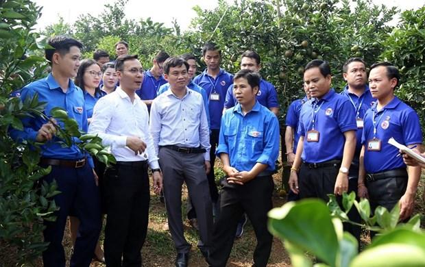 Intensifican Vietnam y Laos los intercambios juveniles hinh anh 1